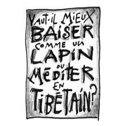 Vaut-il mieux baiser comme un lapin ou méditer en tibétain ?